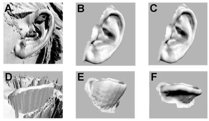 digitized-process-for-human-ears