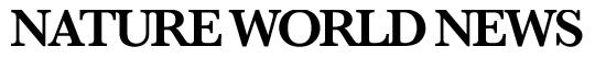 NatureWorldNews