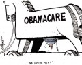 The Missing Link in Obamacare