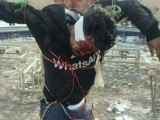 Islamists Crucify Bodies in Syria